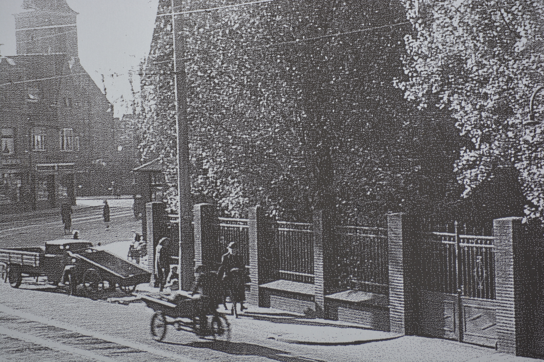 Hek parkweg oud DSC_1350