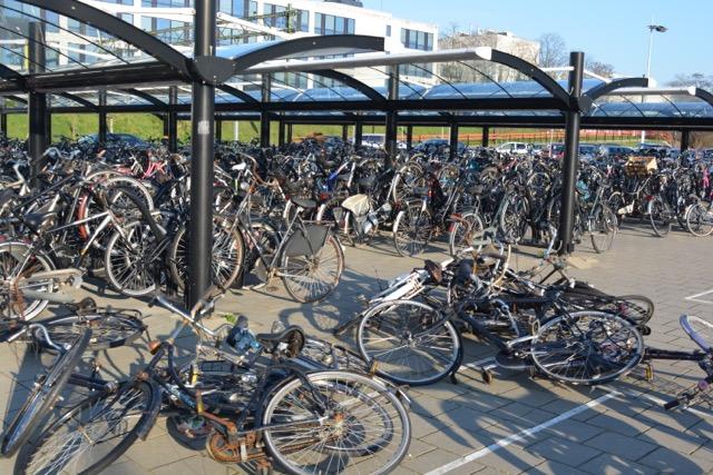 Mariahoeve fietsen DSC_0191