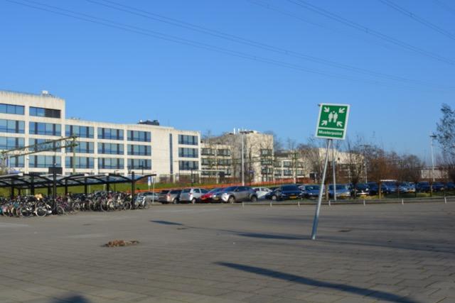 Mariahoeve open terrein DSC_0205