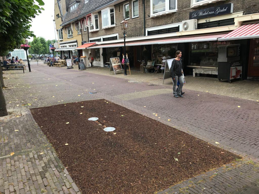 Van Schagenstraat IMG_1474