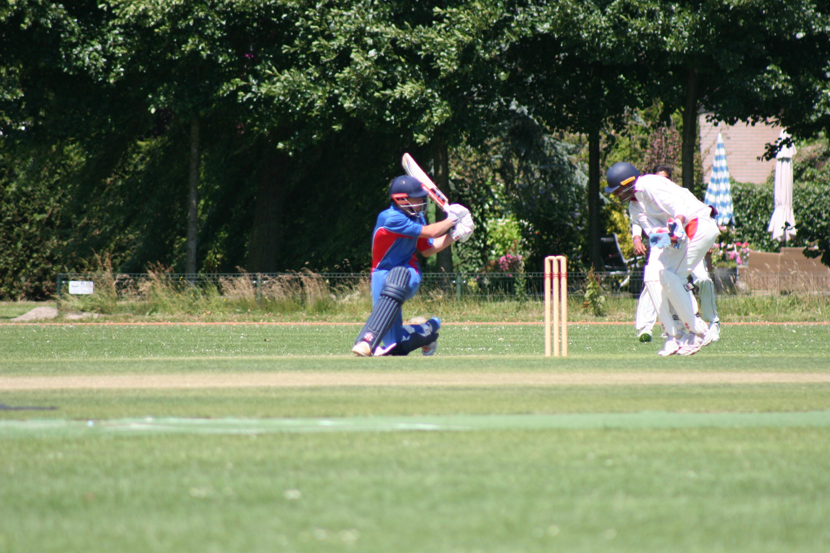cricket IMG_8595