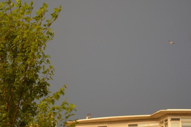 donkere lucht DSC_2207