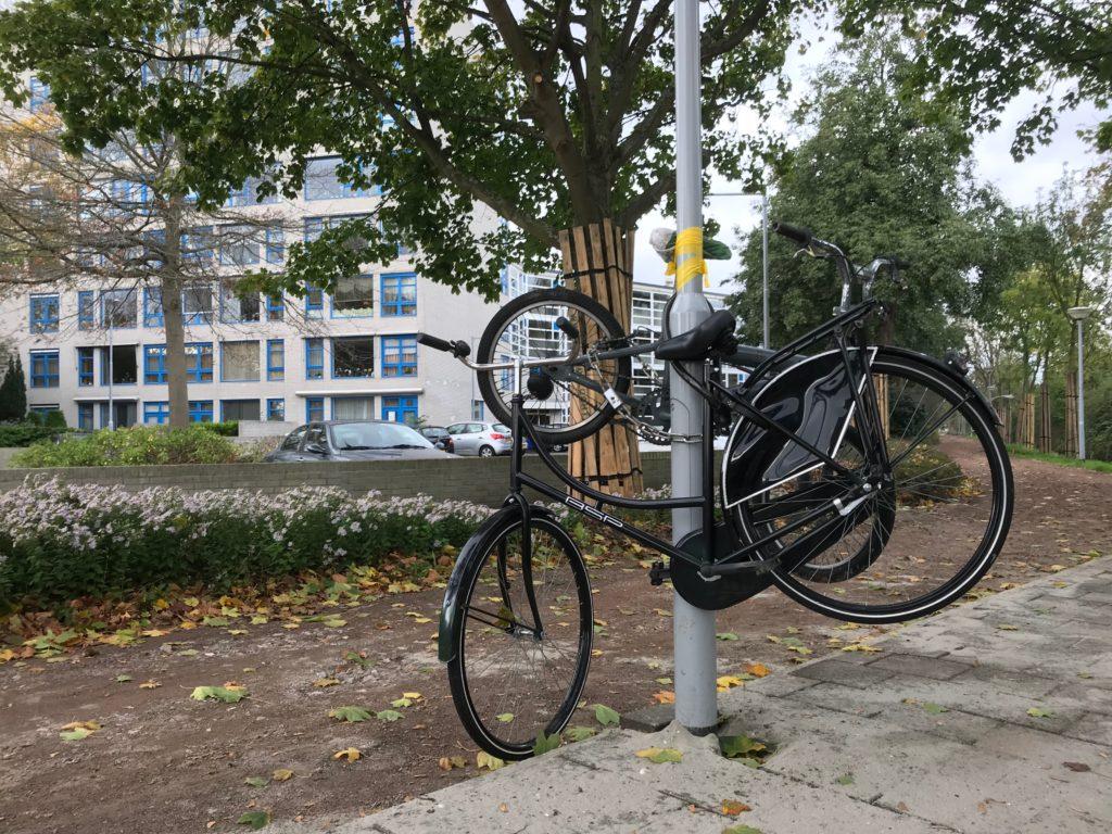 fietsen IMG_3701