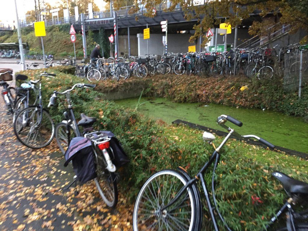 fietsen-img_7271