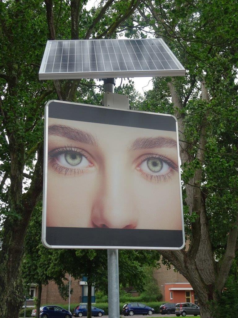 ogen DSC01857