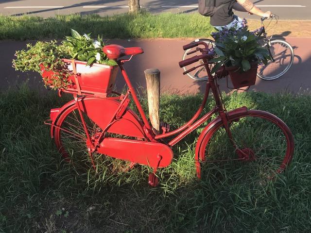 rode fiets IMG_0435